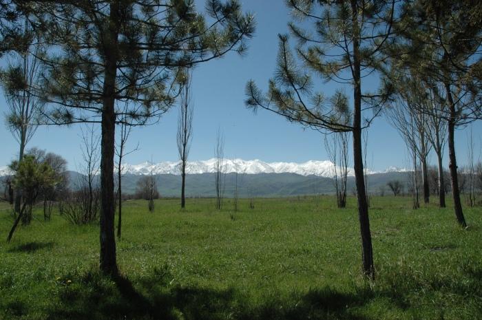 Chuy Valley, Kyrgyzstan 2015